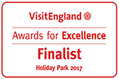 Visit England Award for Excellence